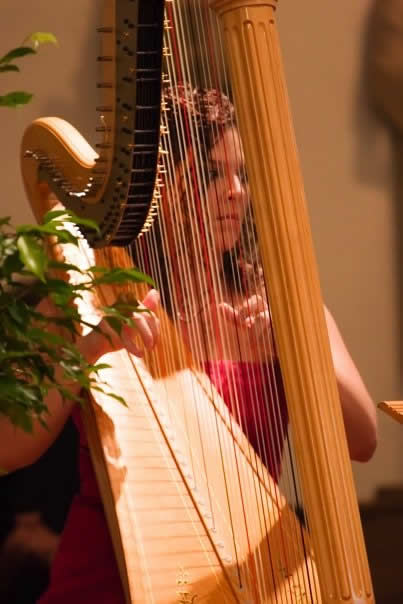 Pink-Dress-Thru-Harp